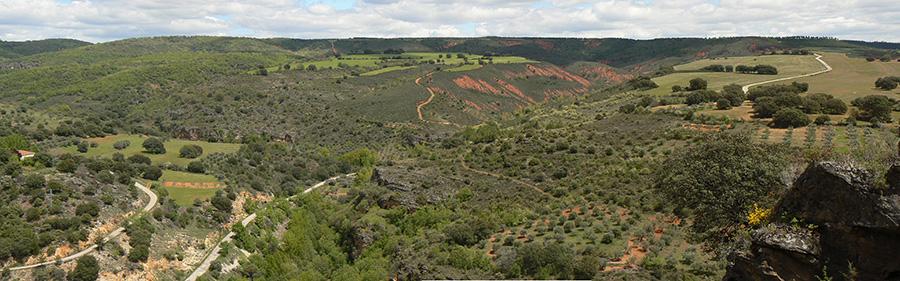 Nuestros trabajos apoyan la idea de que la heterogeneidad del paisaje y la multiplicidad de usos promueven la biodiversidad. Panorámica del valle del Jarama a la altura de Valdesotos